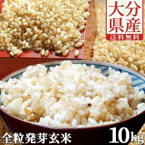 5%還元 【送料無料】大分県産 無洗米 手作り発芽玄米 10kg(真空パック1kg×10袋) 準無農薬(減農薬) スタリオン日田