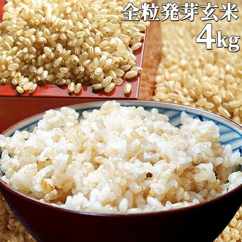 【送料無料】大分県産 無洗米 手作り発芽玄米 4kg(1kg真空パック×4袋) 準無農薬(減農薬) スタリオン日田
