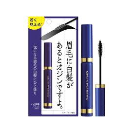 【価格据え置き】5%還元 メンズ眉墨 ブラック 5g ビナ薬粧