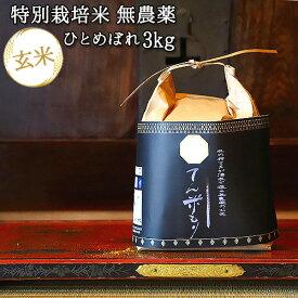 大分県竹田市産 ひとめぼれ 特別栽培米(玄米)【無農薬】「てん米もり」3kg【送料無料】