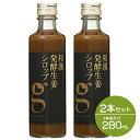 【セット】北海道アンソロポロジー 和漢発酵生姜シロップ 280mL 2本セット しょうが ジンジャー シロップ 生姜ドリン…