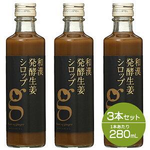 【セット】北海道アンソロポロジー 和漢発酵生姜シロップ 280mL 3本セット ip10