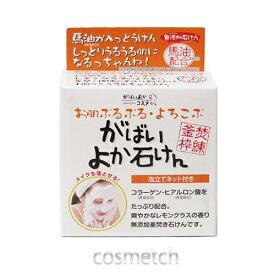 アスティ コスメフリーク・がばいよか石けん 100g (ソープ・固形石鹸)