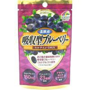 【ユニマットリケン】吸収型ブルーベリー 31粒【アサイー】【アントシアニン】