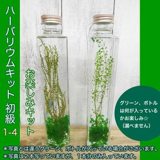 ◎◎ Her barium kit beginner's class 1-4 fun kit (entering one set)