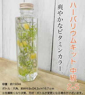 ◎◎ Her barium kit intermediate 2-5 (entering one set)