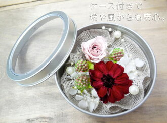 ◎◎ Magnet case pre-the zinnia kit chocolate wine & mauve pink (entering 1 コ)