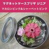 ◎◎ Magnet case pre-the zinnia kit macaroon pink & sherbet pink (entering 1 コ)