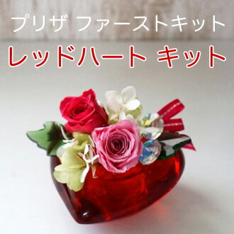 ◎◎PF-01F (pre-the first kit) red heart kit