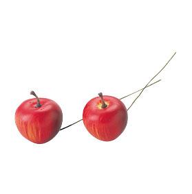 りんごピック 30mm レッド (24本入り) 【イミテーション】【アーティフィシャルフルーツ】【花資材】【花材】【リンゴ】【アップル】【apple】【松村工芸】【アクセサリー】【クリスマス】【飾り】【雑貨】【装飾】【ディスプレイ】【インテリア】【パーティ】