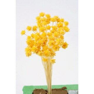 ミニコーンフラワー 20gイエロー【花資材】【花材】【大地農園】3