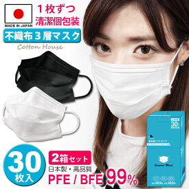 日本 カラー 製 マスク 不織布