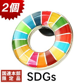【国連本部限定】SDGs ピンバッジ 2個 公式 国連 ショップ限定 正規品 丸み サステナブル 17 目標 日本未発売 バッチ バッヂ sdgs