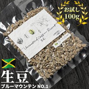コーヒー 生豆 お試し 100g ジャマイカ ブルーマウンテン No1 珈琲 少量 グリーンコーヒー 自家焙煎に 真空パック