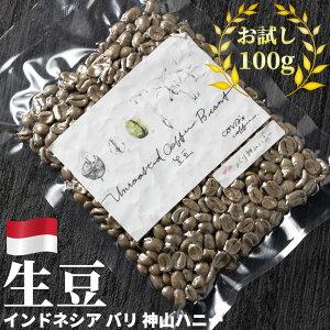 コーヒー 生豆 お試し 100g インドネシア バリ 神山ハニー 珈琲 コーヒー豆少量 グリーンコーヒー 自家焙煎に 真空パック