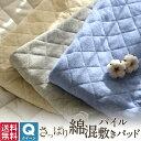 【送料無料】さっぱり 綿混パイル 敷きパッド クイーン パイル タオル地 オールシーズン コットン ベッドパッド 67841