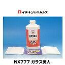 イチネンケミカルズ(旧タイホーコーザイ) NX777 ガラス美人 車窓ガラスのウロコ除去剤 500g(うろこ取り)