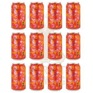 Y.MARKET Hysteric IPA ヒステリック IPA 12缶