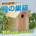 鳥の巣箱 A / 夏休み 工作キット 自由工作 自由研究 手作り 工作 低学年 高学年 小学校 木彫 木工 野鳥 観察 イベント 大量購入