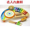 名入れ無料 マイティー ミニバンド 木のおもちゃ ドイツ Hapeハペ 知育玩具 2歳 3歳 木製 楽器 鉄琴 名前入り 出産祝い 男の子 女の子 内祝い