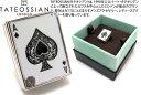 TATEOSSIAN タテオシアン RHODIUM ROYAL FLASH PINS ロイヤルフラッシュピンズ(ロジウム)【タテオシアン正規取扱】…