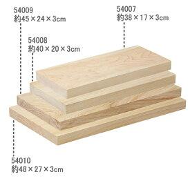TOSARYU 土佐龍 四万十ひのき 一枚板まな板 45×24cm 54009