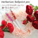 ハーバリウムボールペン 2本セット ケース付き 選べる ギフト プリザーブドフラワー 誕生日 ギフト 女性 祖母 叔母 …