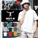 Hanes/ヘインズ BEEFY-T ヘビーウェイト Tシャツ カットソー ポケット ポケットT メンズ ビーフィー 無地 半袖 シンプル カジュアル レディース ユニセックス おしゃれ かっこいい 誕生日プレゼント クリスマス 彼氏 父 息子 男性 ギフト 記念日 H5190p