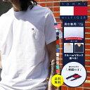 【メール便】TOMMY HILFIGER/トミー ヒルフィガー Tシャツ カットソー メンズ コットン100% シンプル ロゴ ワンポイン…