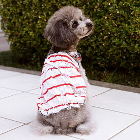 CRAZYBOO / クレイジーブー【アウトレット】フリルボーダーキャミソールXL / XXL / DLサイズ犬服 / 犬の服/ ドッグウェア