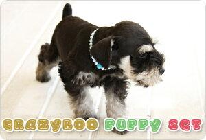 puppy_set_01