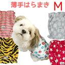 犬用 犬のはらまき 薄手はらまき 春・夏用 腹巻 冷え対策 Mサイズ 春先朝晩・夏のクーラー対策 ドッグウェア…