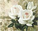 大人の塗り絵 絵画 油絵塗り絵 油絵セット 塗り絵キット 数字塗り絵 油絵風 白い牡丹 名画 【油絵】 アクリル絵の具 …