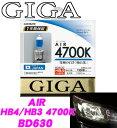 Img61374804