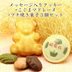 メッセージ入り クッキー こぐまマドレーヌ プチ焼き菓子3個 セット 名入れ