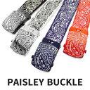 Ac buckle paisley 1