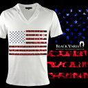 Vネック Tシャツ 星条旗 星 国旗 アメリカ USA アメリカン ヒョウ 豹 メンズ 半袖 Tシャツ(ホワイト白レッド赤) zkk050