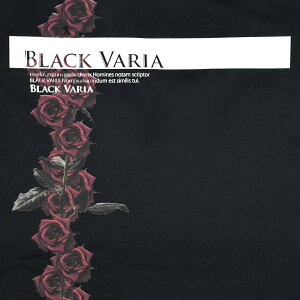 Tシャツ長袖ボックスロゴバラ花柄薔薇Vネックメンズ