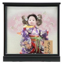 雛人形 ケース入り童人形【桜人形】[幅32cm][it-1071] 雛祭り