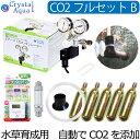 クリスタルアクア CO2フルセット Bタイプ 【自動CO2添加】(スピコン+電磁弁一体型CO2レギュレーター、タイマー他…