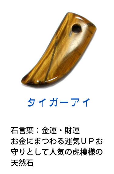天然石 タイガーアイ 牙(キバ)型成型石 (ネコポスOK) 5000円以上 送料無料 st07 cl11