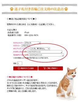 猫の首輪迷子札付き猫首輪ホワイトベーシック10mm幅首輪【楽ギフ_包装】【RCP】ネームタグドッグタグねこ、くびわ