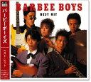 バービーボーイズ ベスト・ヒット (CD)