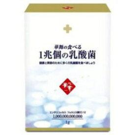 ☆華舞の食べる1兆個の乳酸菌 1.0g×30本☆乳酸菌 ダイエット 美容 アレルギー