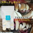 スターターキット 犬 歯石 歯石除去 歯磨き 口臭予防 ゼオライト不使用 歯石 歯石取り 自分で 天然成分 歯肉炎予防 犬…