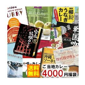 【送料無料】訳ありご当地カレー 10種類詰め合わせ 4000円セット