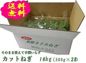 阿波の新鮮カットねぎ 14kg(500g×28袋)業務用 送料無料 徳島県産産地直送 クール便
