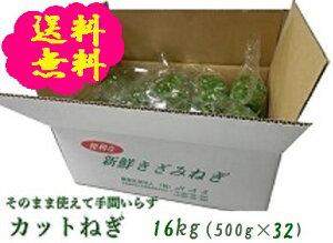 阿波の新鮮カットねぎ 16kg(500g×32袋)業務用 送料無料 徳島県産産地直送 クール便
