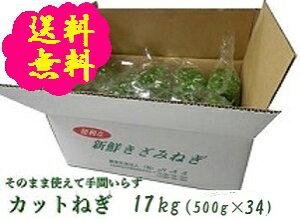 阿波の新鮮カットねぎ 17kg(500g×34袋)業務用 送料無料 徳島県産産地直送 クール便