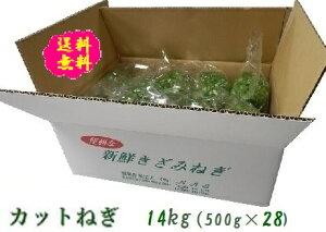 阿波の新鮮カットねぎ 14kg(500g×28袋)業務用 国産 送料無料 徳島県産 自社産 産地直送 クール便